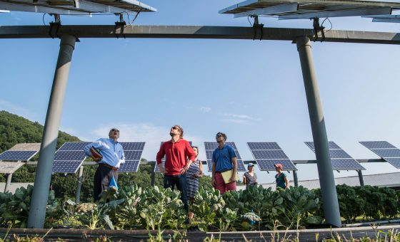 How to test solar panels safely