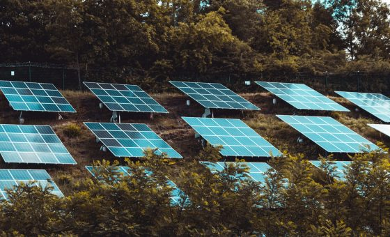 How do Solar Cells Work and Produce Electricity?