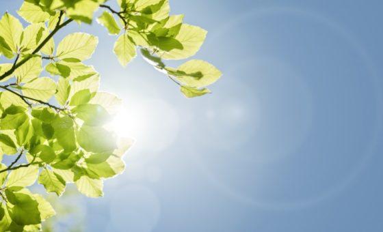 Solar power news round-up